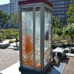 Phone booth fish tank by Kingyobu 4