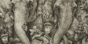 Elephants by Adonna Khare featured