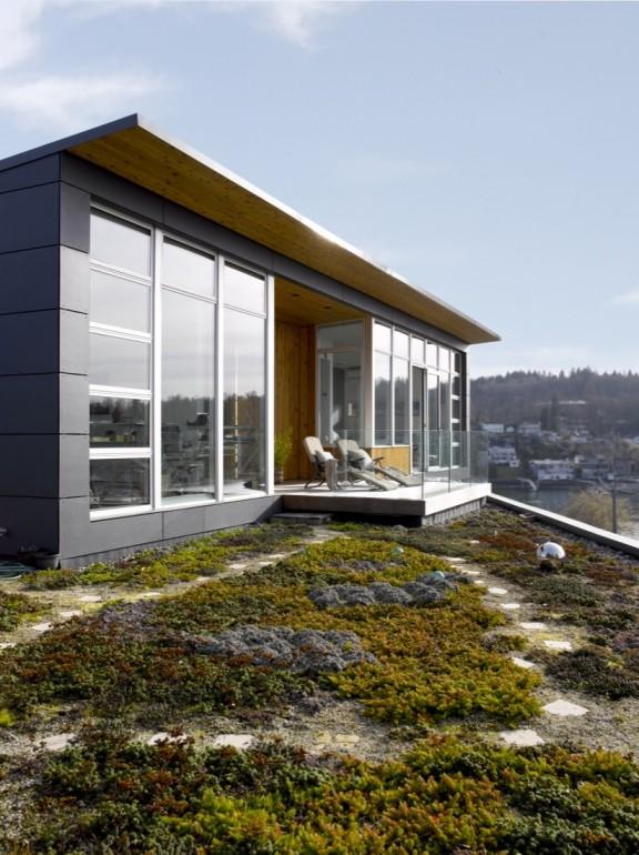 Ballard Cut by Prentiss Architects photo by Alex Hayden 5