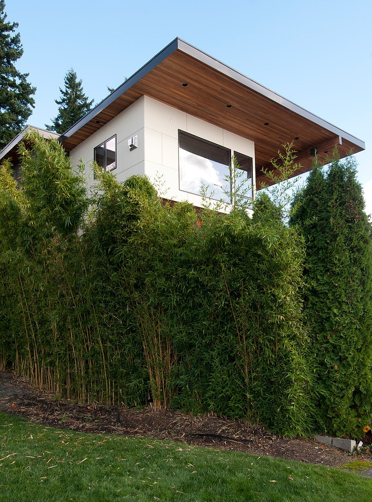 Kirkland Residence Remodeling garden view